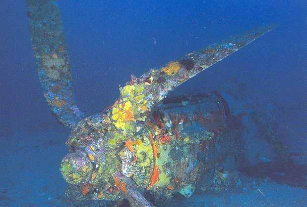 Carte Marine Presqu'ile de Giens Presqu'ile de Giens